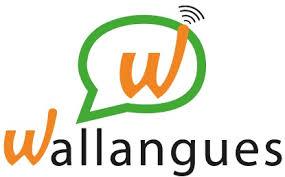 Se former en langues en ligne